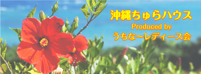 沖縄ちゅらハウスについて
